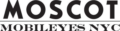Mobileyes logo s550