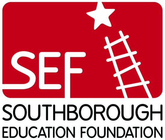 Sef logo lrg color s550