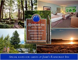 Auction jamiesrainforestinnspecialoffersonwebsite s300
