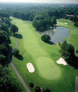 Golfpic s300