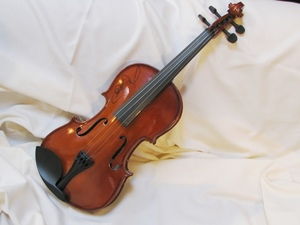 Charlie daniels fiddle s300