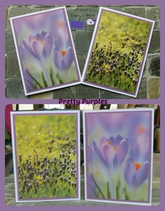 Cards more pretty purples   be staci strong auction s300