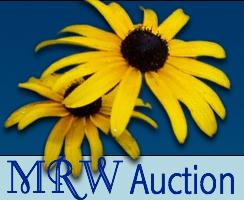 Mrw auction button image s550