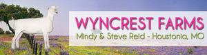 Wyncrest s300