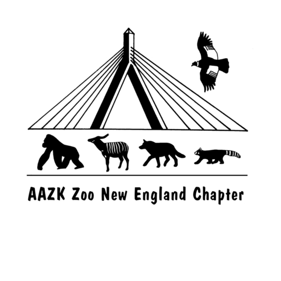 Aazk zne logo with text final s550