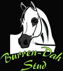 Burren dah logo s300