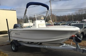 Robalo new picture s300