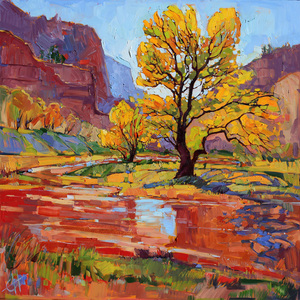Erin hanson reflections in the wash s300