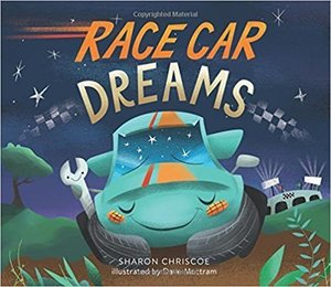 Race car dreams s300