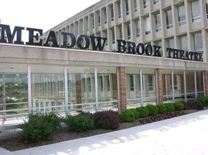 Meadow brook theatre s300