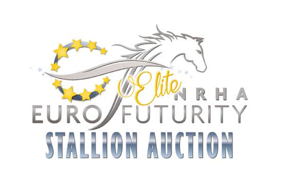 Elite stallion auction s550