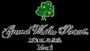 Grand wailea resort s300