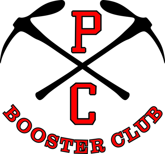 Booster pick ax high res logo s550