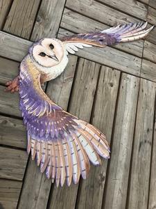 Barn owl  s300