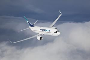 Plane s300