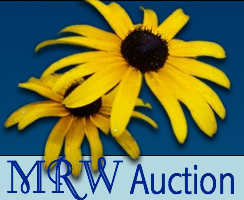 Mrw auction button image large s300