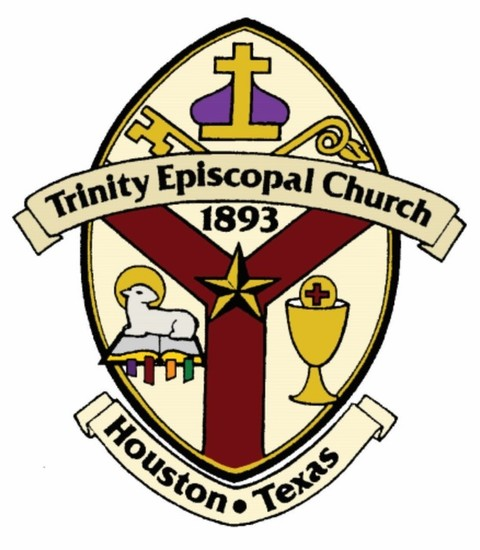 Trinity color logo s550